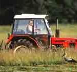 bocian_traktor