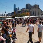 Mieszanka ras-City Melbourne